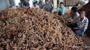 sehat, alami, produk indonesia